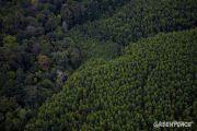 Vers la sortie de cinq sites naturels congolais de la liste du patrimoine mondial en péril