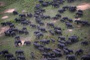 Les sites touristiques naturels en bon état dans la province du Sud-Kivu