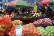 Exposition vente de produits maraîchers à Kolwezi