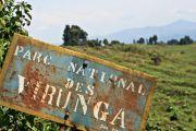 Nord-Kivu: l'ICCN déplore la spoliation d'une partie du parc des Virunga
